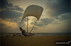 negombo beach strand boot boat sand